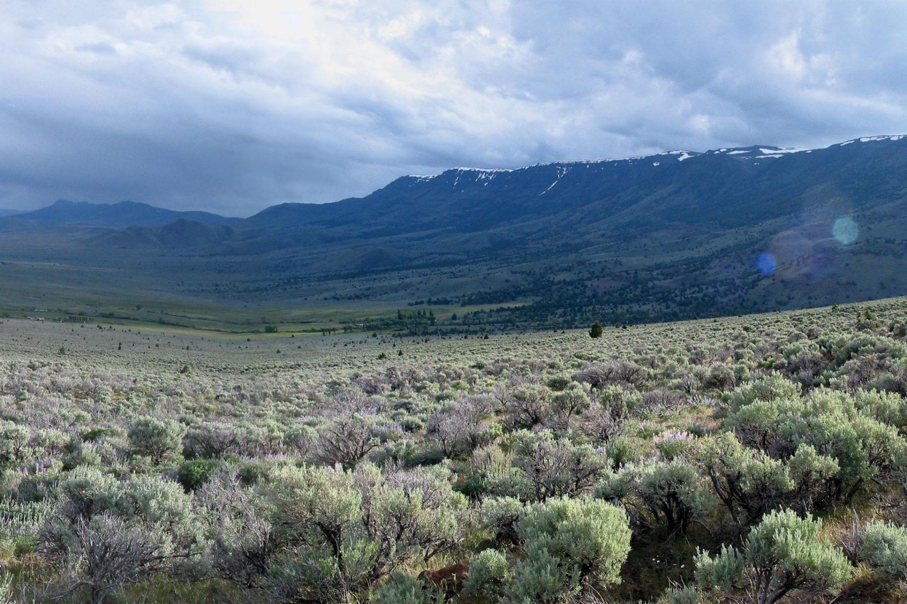 Wildhorse Ranch Site Inventory Analysis Design